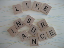 Expat Life Insurance